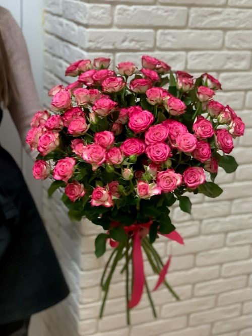 19 roz heili04