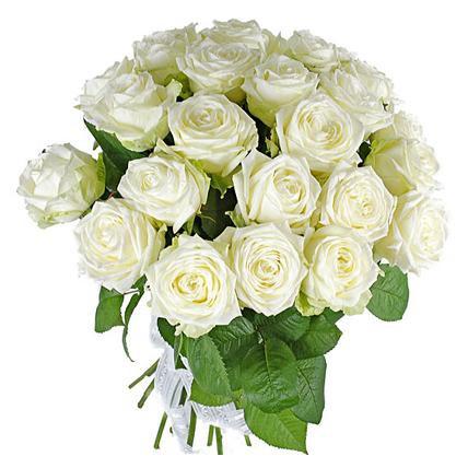 25 bel roz