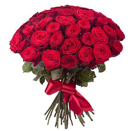 51 roza red naomi