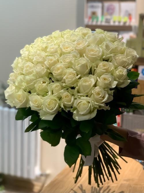 51 bel roza011