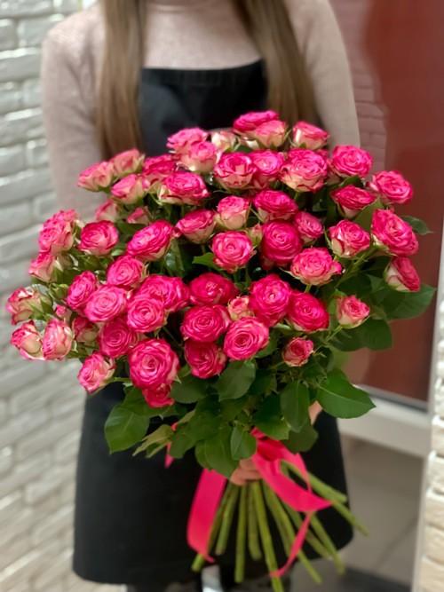 25 roz heili01