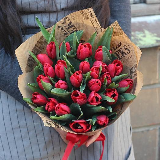 25 krasnih tulip