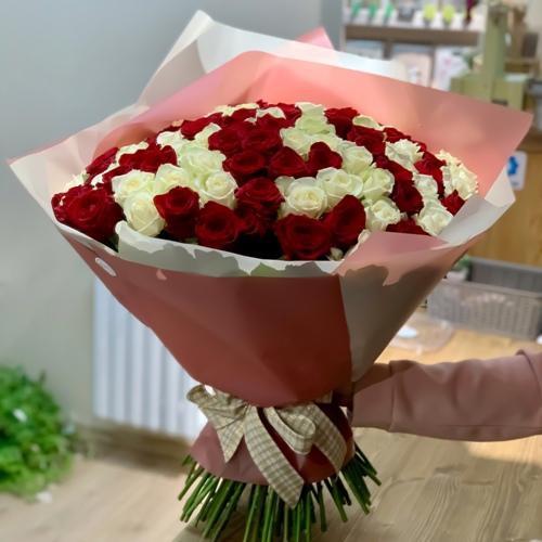 101 belo-krasnaya roza011