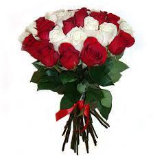 buket iz 25 bel kr roz